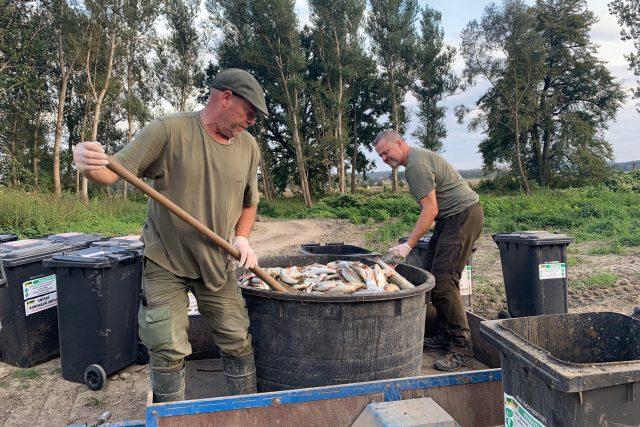 Několik desítek tun ryb uhynulých v řece Bečvě otrávily kyanidy | foto: Lenka Kratochvílová,  Český rozhlas,  Český rozhlas