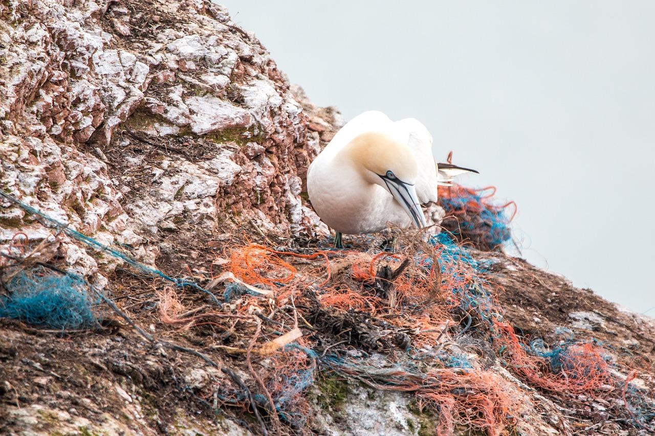 plasty, plastové znečištění, ilustrační foto